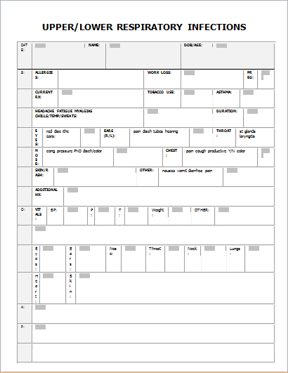 how to document respiratory assessment